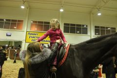"""IMG_5690.JPGНа манеже - \""""Волк и семеро козлят\"""" представление Новый год-2015 конно-спортивная школа выходной"""