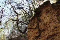 Овраг постепенно размывается.Бежит ручей водопадом в Волгу Неизвестная Чувашия Колесо путешествий