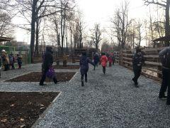 В Новочебоксарском зоопарке детвора опробовала новые дорожки из мраморной крошки (фото, видео) Зоопарк Ельниковская роща