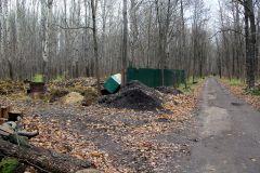 Навозная куча рядом с пешеходной дорожкой! Вот так хранятся в Ельниковской роще опасные отходы. Фото Максима БОБРОВАПора прекратить потребительски относиться к окружающей среде Круглый стол