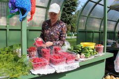 """На мини-рынке на """"Каблучке"""" богатый ассортимент сезонных овощей и фруктов. После дождичка – грибы цены"""