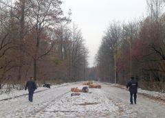Полиция ищет очевидцевХулиганы бросают вызов власти Новочебоксарска: скульптуры в роще повалены все и сломаны скульптуры Новочебоксарск Ельниковская роща вандализм
