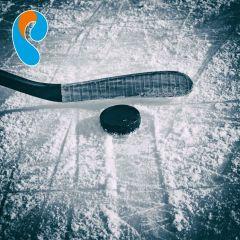 EurosportGold – эксклюзивный спортивный телеканал для зрителей «Интерактивного ТВ» от «Ростелекома» Филиал в Чувашской Республике ПАО «Ростелеком»