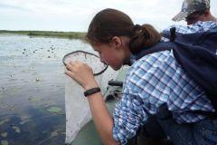 На озере Малом ЛебединомЧебоксарская ГЭС помогла организовать «Школу дикой природы» для юннатов РусГидро