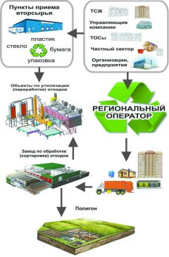 Инфографика с сайта priroda.ruВетер перемен мусор не унес ТКО мусор