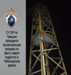 В поле у Хыркасов 12-летний мальчик на вышке линии электропередач погиб от удара током