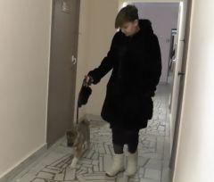 Щенок с хозяйкойПолиция нашла похитителя щенка, собаку вернули чебоксарской хозяйке кража