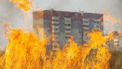 Загоревшаяся трава может привести к сильному пожаруМЧС предлагает увеличить штрафы за поджог травы МЧС поджог