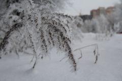 SniezhnyiNChK_09.JPGНовочебоксарск: зимние виды (фото)