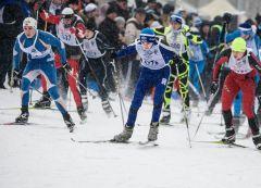 Соревнования по спортивному туризму на лыжных дистанциях в Ельниковской роще