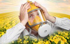 Фото i.sunhome.ruТополиный пух, жара, июнь...  и аллергия аллергия