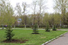 В Новочебоксарске будет  Аллея Космонавтов
