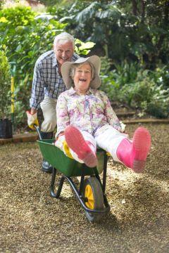 Как физиотерапия влияет  на урожайность дачного участка? Еламед Алмаг