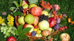 Август просит о подмоге: соберите урожай Чем заняться Страна советов