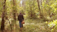 Лес не терпит ошибок и риска Школа выживания