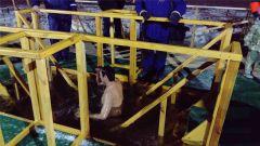 hd_12krieshchieniie.jpg В Новочебоксарске более 1600 человек окунулись в купелях в Крещенскую ночь 19 января — Крещение Господне