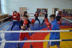 Григорий Дрозд провел мастер-класс для юных боксеров Чувашии бокс