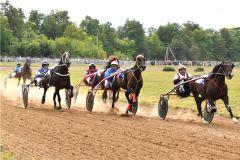 Соревнования. Фото: cap.ruНовочебоксарск примет соревнования по конному спорту Конный спорт в Новочебоксарске