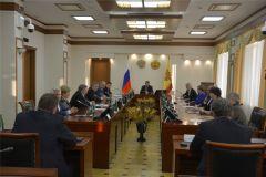 Олег Николаев поддержал первую инициативу Общественного совета