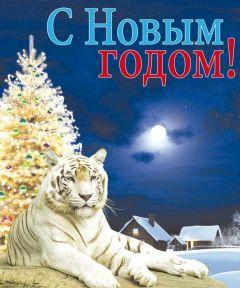 C Новым  Годом! Новый год  - 2010