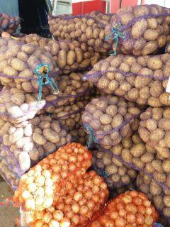 """Дары осени"" радуют картофелем. Фото: nowch.cap.ruНа ярмарках ""Дары осени - 2019"" продали 100 тонн молодого картофеля Дары осени"
