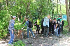 img_3637.jpgШкольники очистили Ельниковскую рощу от мусора роща Новочебоксарск Ельниковская роща