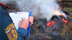 Сжег траву - штраф. Фото: cap.ruС начала 2019 года за сжигание сухой травы в Чувашии оштрафовали 134 человека трава МЧС Чувашии