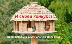 Запускаем конкурс «Чудо-столовая» Ельниковская роща