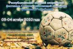 """На базе """"Сурские зори"""" пройдет осенний спортивный фестиваль Советов работающей молодежи Чувашии"""