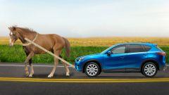 Чем не изменение условий эксплуатации транспортного средства. Коллаж Марии СМИРНОВОЙОСАГО: Отказать нельзя платить