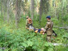 Поход за грибами может закончиться спасательной операцией. Как выйти из леса Школа выживания