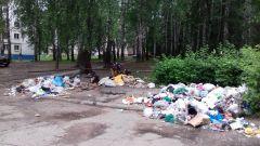 Фото Владимира ГОЛОВАА мусор и ныне там Фотофакт