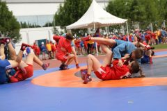 olimpiiskii.jpgМероприятия XXX Всероссийского олимпийского дня в Чебоксарах посетили более 2 тысяч человек