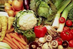 """ovoshchi.jpgРоссия отменила """"овощной запрет"""" из Бельгии и Нидерландов эмбарго запрет на ввоз овощей"""