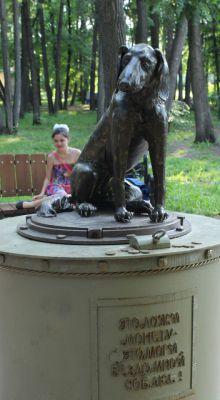 Памятник бездомной собаке в Елабуге.Легенда для Новочебоксарска Тропой туриста Памятники