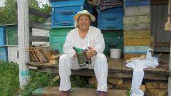 Мед получается липовый, цветочный, фацелиевый (очень полезный). Фото из домашнего архива В.ПлешковаЛето на пользу семье Июльские хлопоты