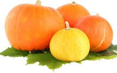 Любимица садоводов — оранжевая красавица Тыква рецепты
