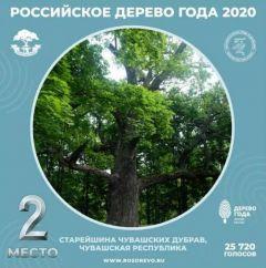 У чувашского дуба второе местоЧувашский дуб занял второе место во всероссийском конкурсе Всероссийский конкурс