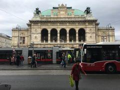 Трамваи останавливаются прямо у Венской оперы, что очень удобно.Моцарт, штрудель, Бельведер Колесо путешествий