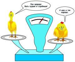 Рисунок Марии СМИРНОВОЙКак бройлер на глазах похудел Другим наука