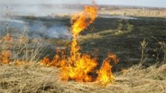 МЧС предупреждает: не сжигайте сухую траву и мусор!