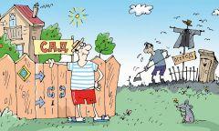 """www.vkonline.ru.Шесть соток по новому закону """"Грани"""" – партнер """"РГ"""" Дачные новшества"""