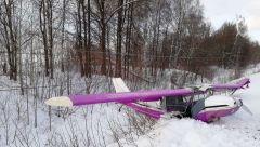 Место ЧП в Марий ЭлВ Звениговском районе Марий Эл пострадали авиалюбители, летавшие на самодельном Coyote II авиакатастрофа