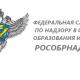 Представитель Рособрнадзора ответил на самые острые вопросы о ГИА в 2017 году