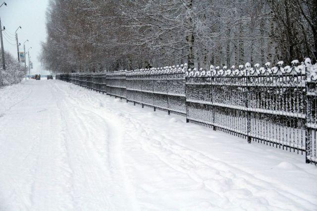 Sniezhnyi NChK 29 02