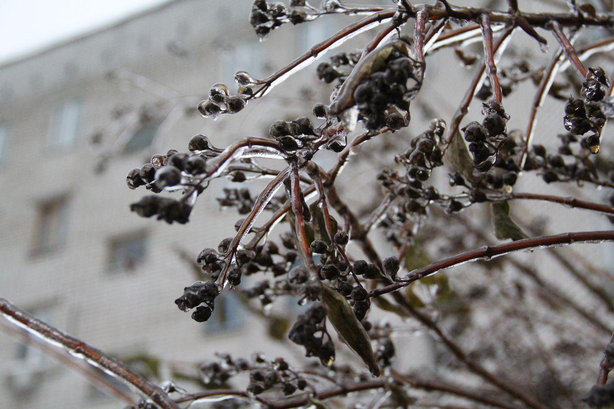 Погода в красноярске за декабрь 2016